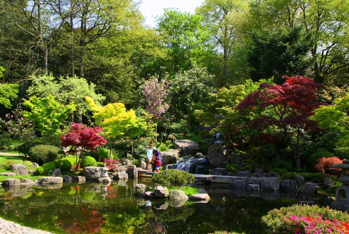 фото японские сады